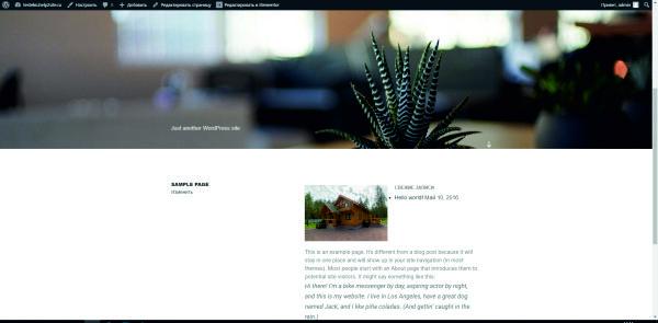 вид стандартной страницы при создании сайтов